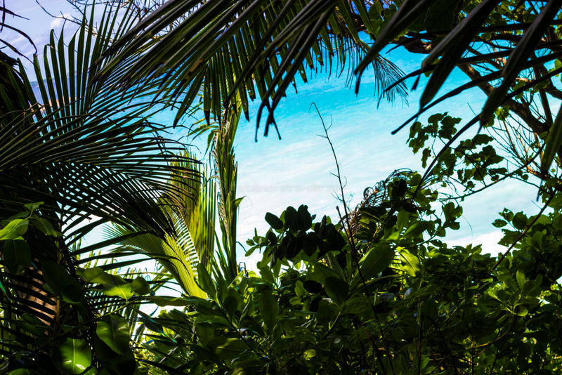 seychelles-travel-guide-itinerary-1-45